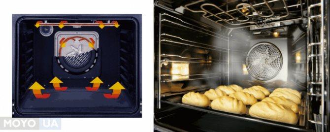 Конвекция в духовке: что это такое и в чём польза режима