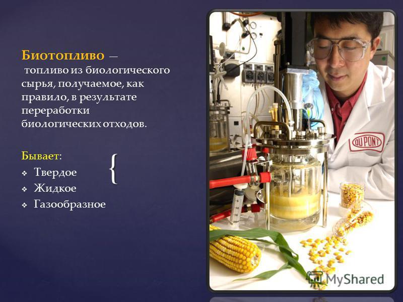 Биотопливо для камина - своими руками, цены и фотографии марок