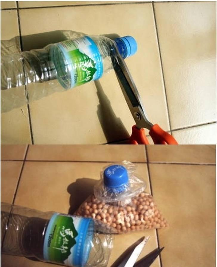 21 вариант использования пластиковых бутылок на даче - огород, сад, балкон - медиаплатформа миртесен
