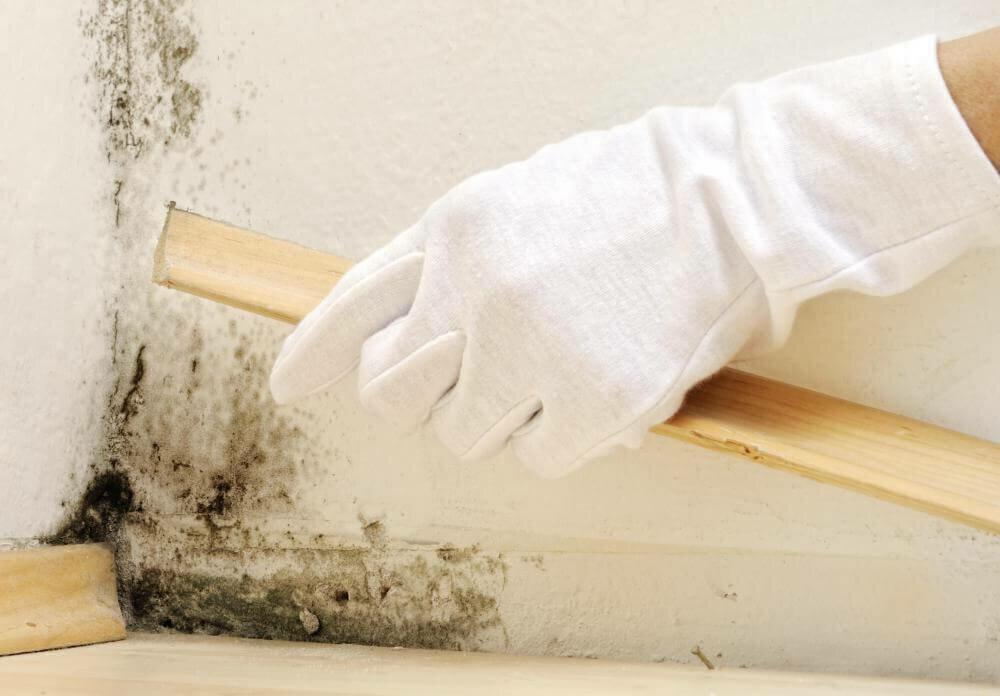 Как убрать грибок в ванной: обзор многих эффективных средств