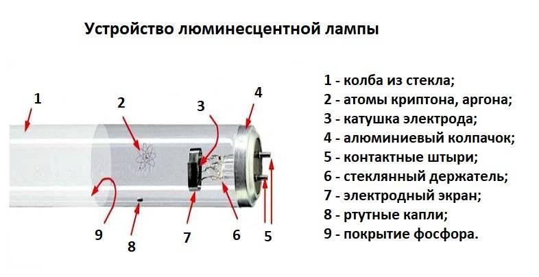 Какие бывают виды ламп: характеристики и разновидности современных моделей, как правильно называются длинные и энергосберегающие лампочки для дома