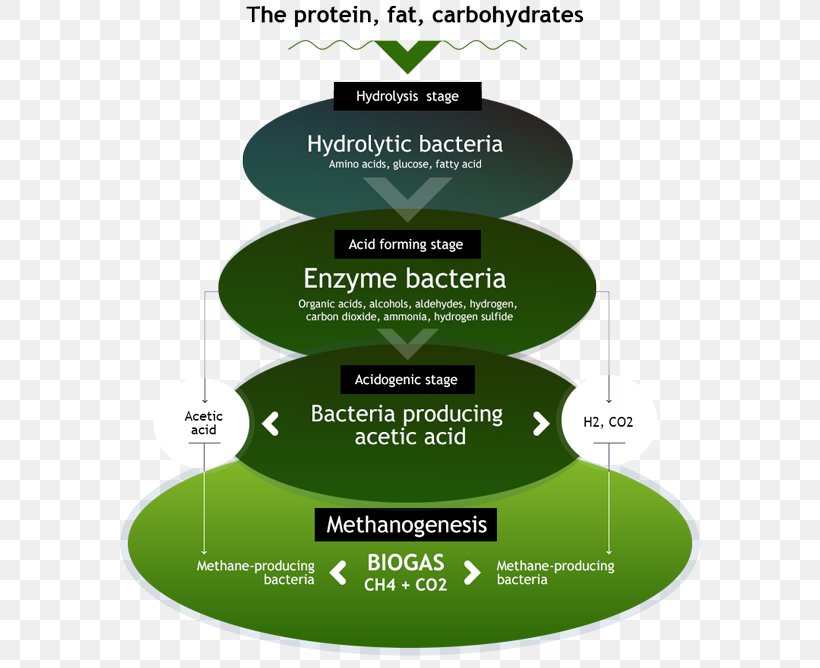 Биогаз, производство биогаза из отходов органики (навоза) - идея бизнеса