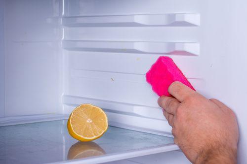 Как убрать неприятный запах из холодильника: обзор эффективных способов