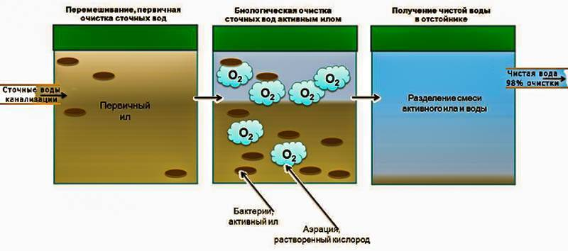 Бактерии для септиков и выгребных ям: как работают и как выбрать какие лучше купить + отзывы