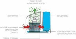 Вред и польза увлажнителя для организма человека: стоит ли покупать увлажнитель и почему