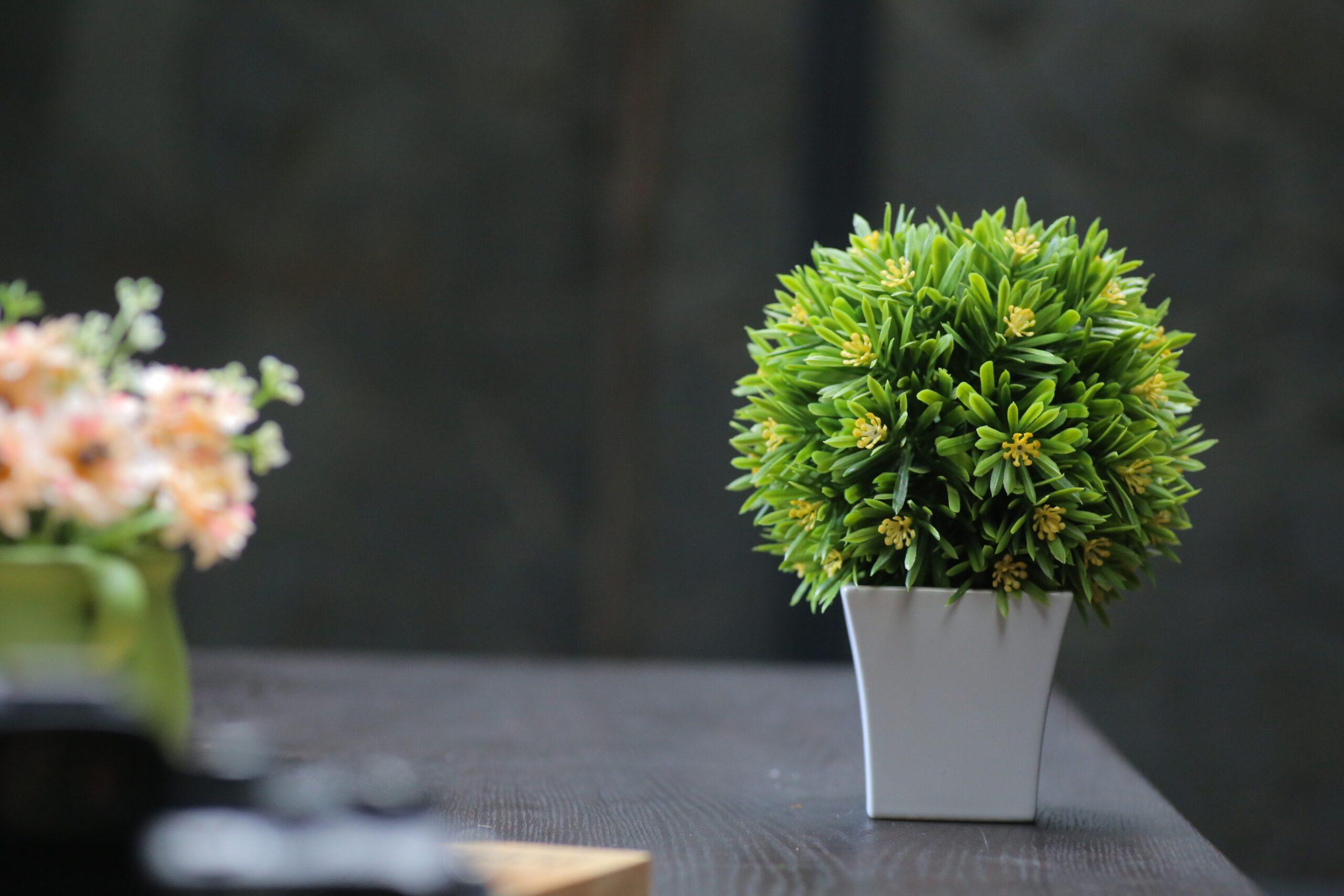 Можно ли дома держать искусственные цветы: приметы