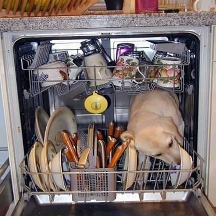 Что можно и нельзя мыть в посудомоечной машине: особенности мытья посуды из разных материалов