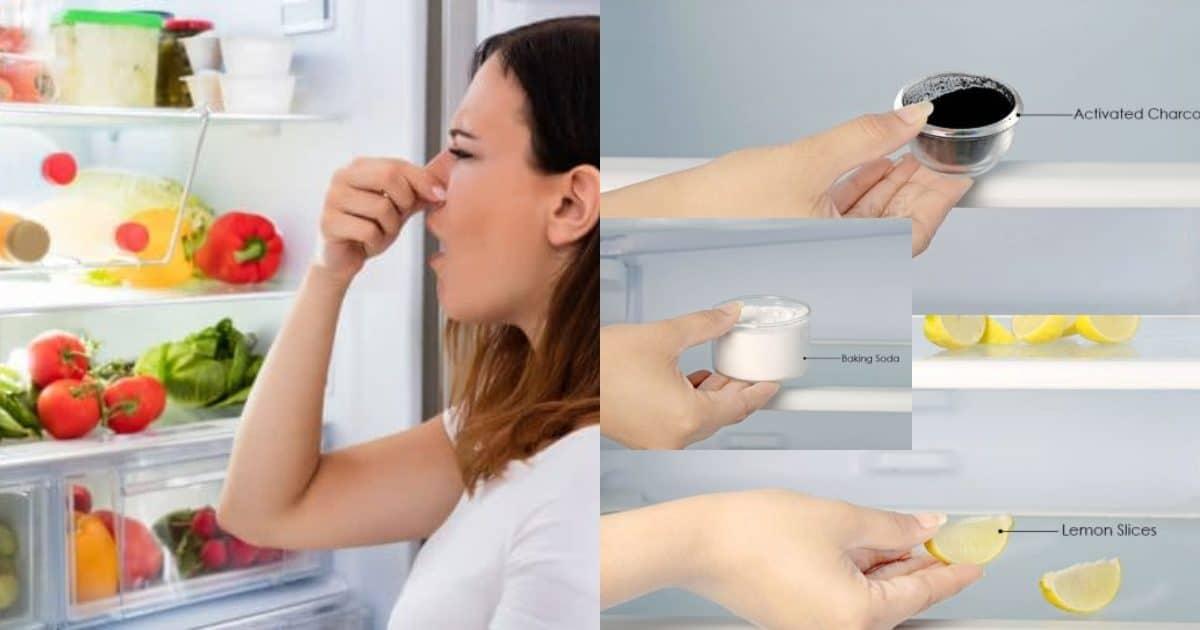 Как убрать запах из холодильника: 50 лучших средств и методов, как правильно мыть технику