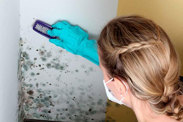 Как избавиться от грибка в ванной специальными и народными средствами