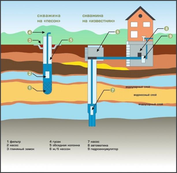 Как найти воду для скважины: три эффективных способа поиска источника