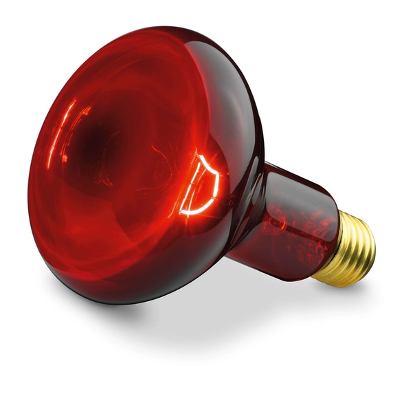 Инфракрасная лампа для обогрева (красная, керамическая) - птицы, животных