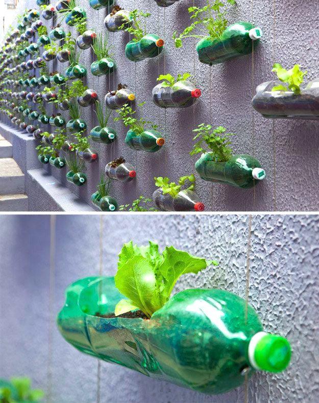 Применение пластиковых бутылок на даче: полезные изделия и украшения