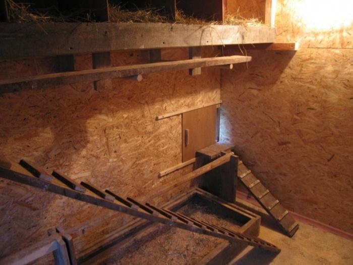 Как утеплить курятник: на зиму своими руками, изоляция пола крыши и потолка