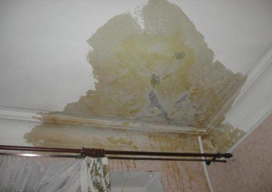 Конденсат на потолке в доме - что делать? (25 фото)