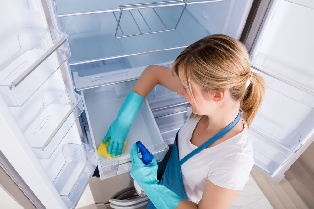 Запах в холодильнике: его причины и быстрое устранение, в домашних условиях народными и химическими средствами
