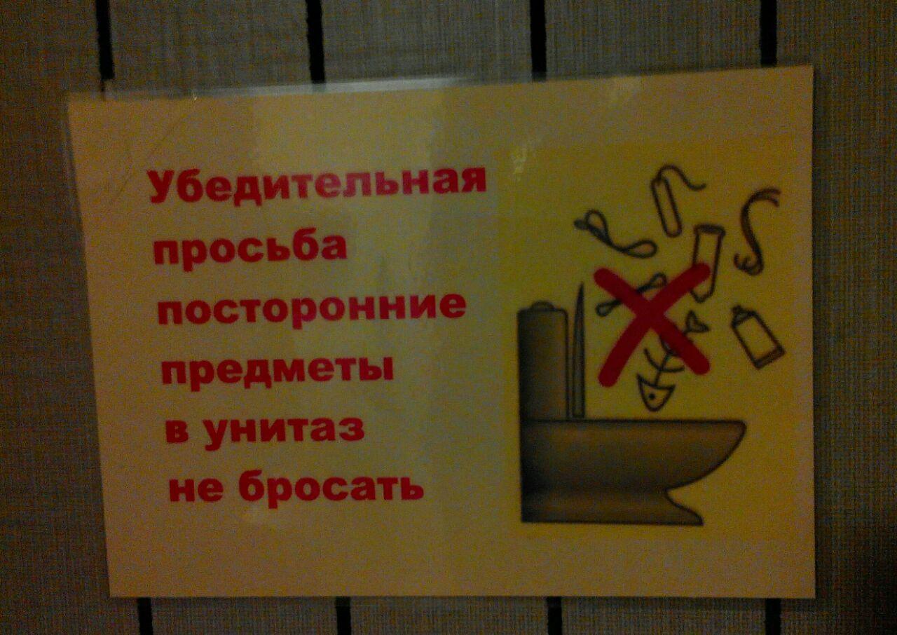12 предметов, которые запрещено смывать в унитаз | кто?что?где?