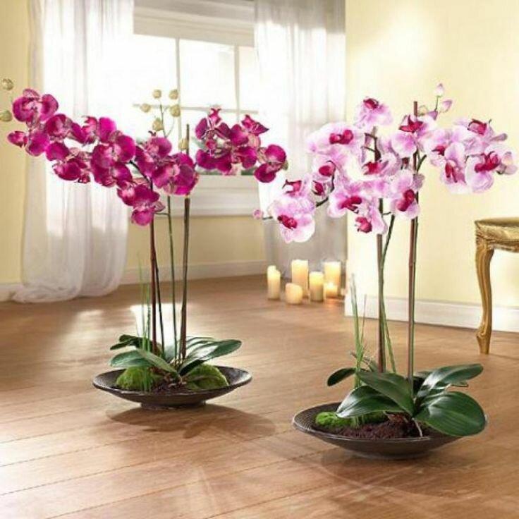 Можно ли держать дома искусственные цветы приметы | astrostory