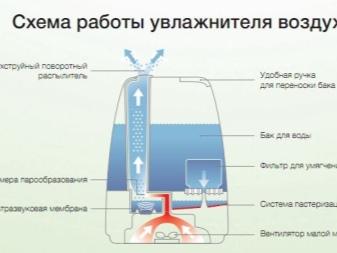 Ремонт увлажнителя воздуха: как разобрать его своими руками? особенности диагностики. правила чистки. как чинить поломки?