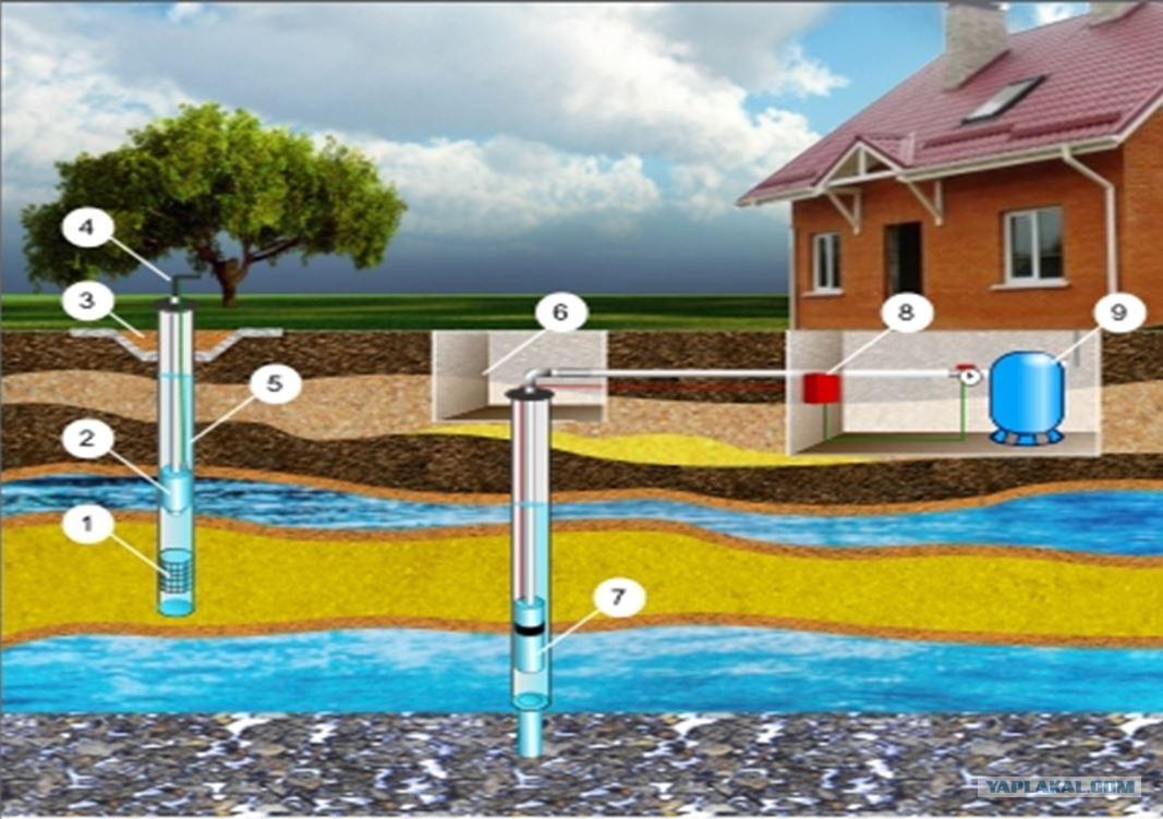 Как найти воду для скважины: разбираем три эффективных способа поиска