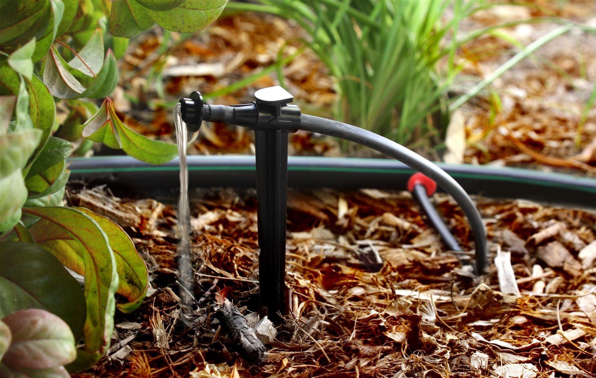 Системы капельного полива: лучшие идеи для богатого урожая