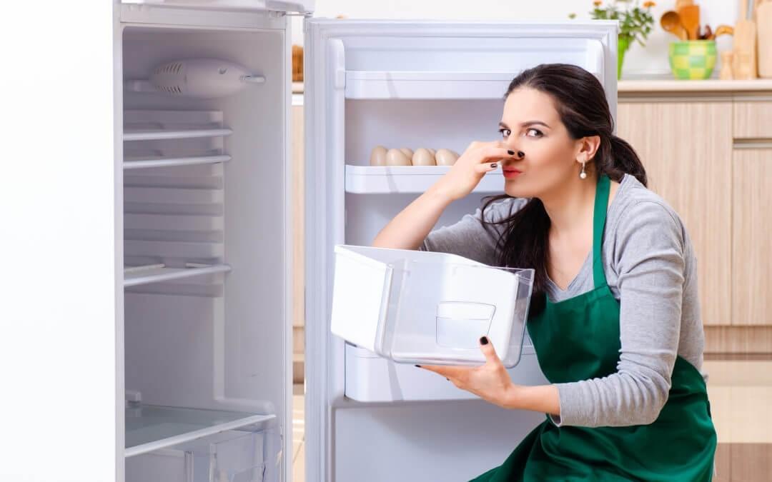 Запах в холодильнике как избавиться: избавляемся от запаха народными средствами