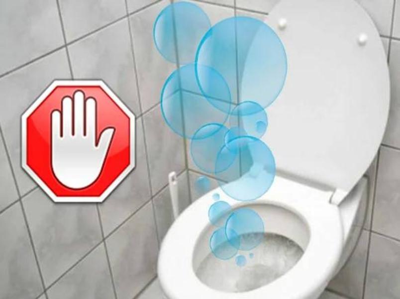 Запах канализации в туалете: почему пахнет канализацией, как устранить неприятный запах, почему воняет из унитаза, причины, как убрать запах, избавиться