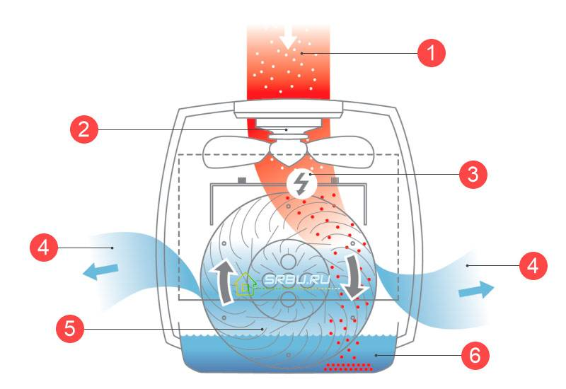 Как помыть увлажнитель воздуха
