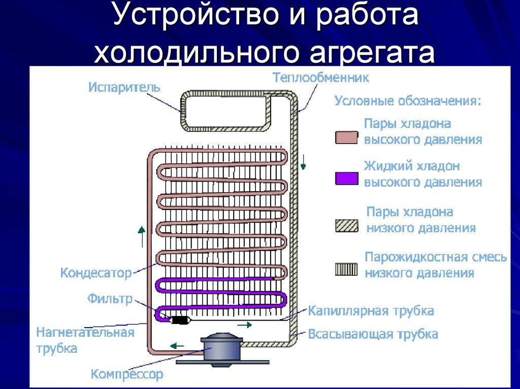Принцип работы холодильника: устройство, принципиальная электрическая схема, компрессора, простыми словами для новичка, принцып действия бытового прибора