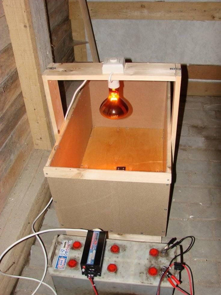 Приспособления и устройства для обогрева цыплят