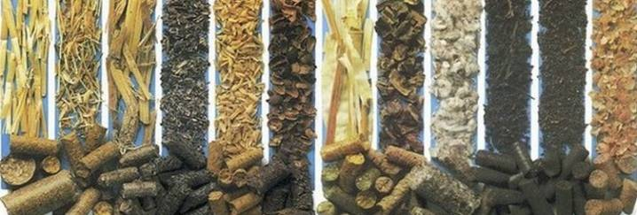 Технология производства пеллет - из топливных опилок, древесины, торфа, горбыля и соломы
