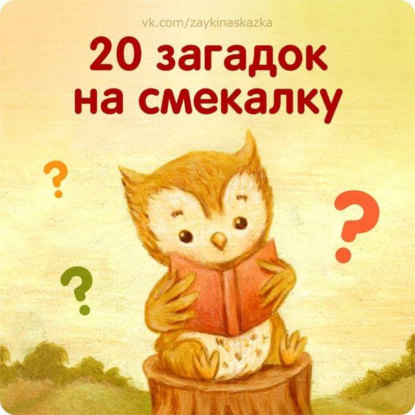 Загадки на логику для детей: дошкольникам, 1-5 класс