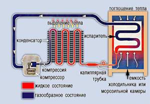 Принцип работы и устройство автомобильных холодильников