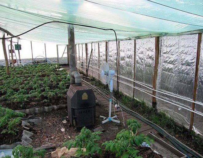 Как построить зимнюю теплицу с отоплением своими руками: проект, чертеж, варианты обогрева и освещения – все о томатах. выращивание томатов. сорта и рассада.