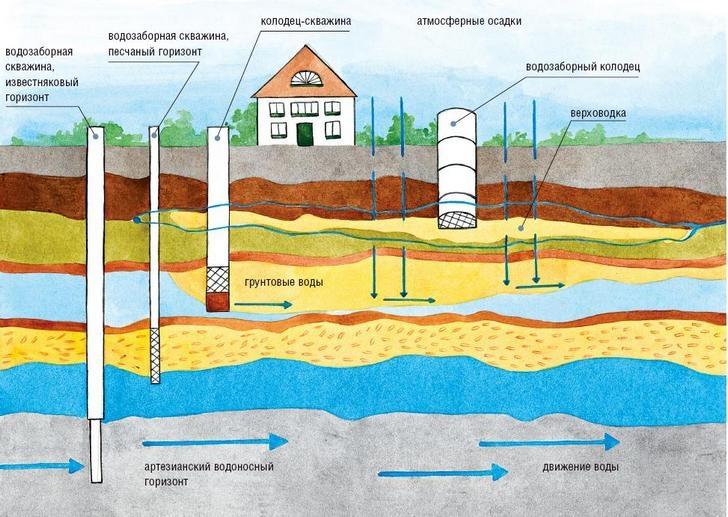 Как найти воду на участке для скважины и поиск места