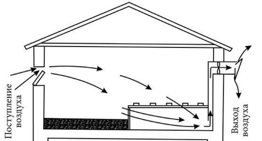 Вентиляция в курятнике зимой своими руками: схема вентиляция в курятнике зимой своими руками: схема
