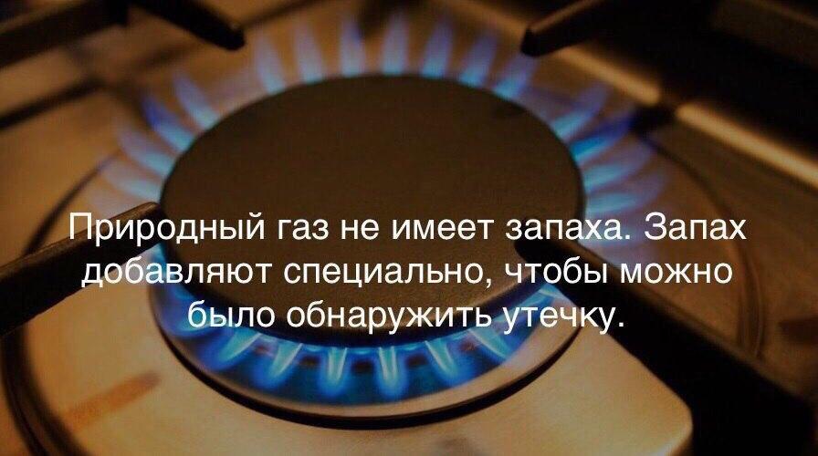 Воняет газом от плиты: почему пахнет газом из духовки и от конфорок, и как это устранить?