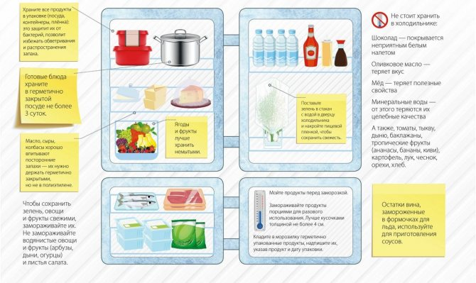 Оптимальная температура хранения продуктов в морозильной камере