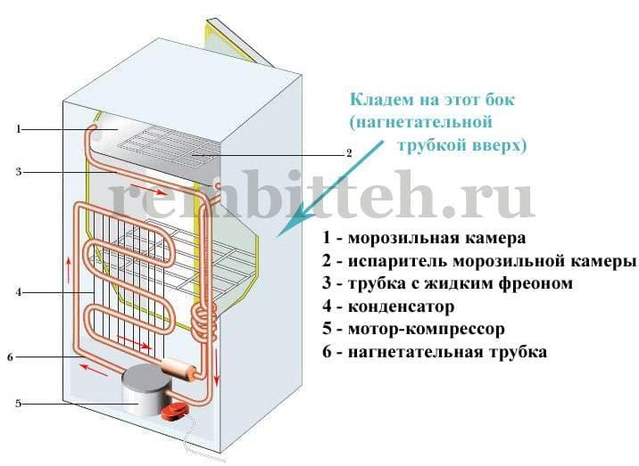 Как перевозить холодильник при переезде правильно: стоя или лежа на боку
