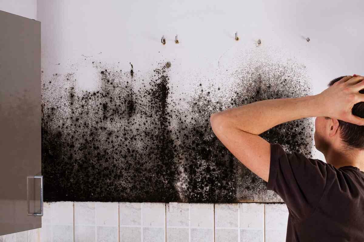 Как избавиться от сырости в квартире — проверенные способы