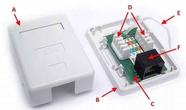 Компьютерная розетка: виды, категории, правила расположения и технология подключения
