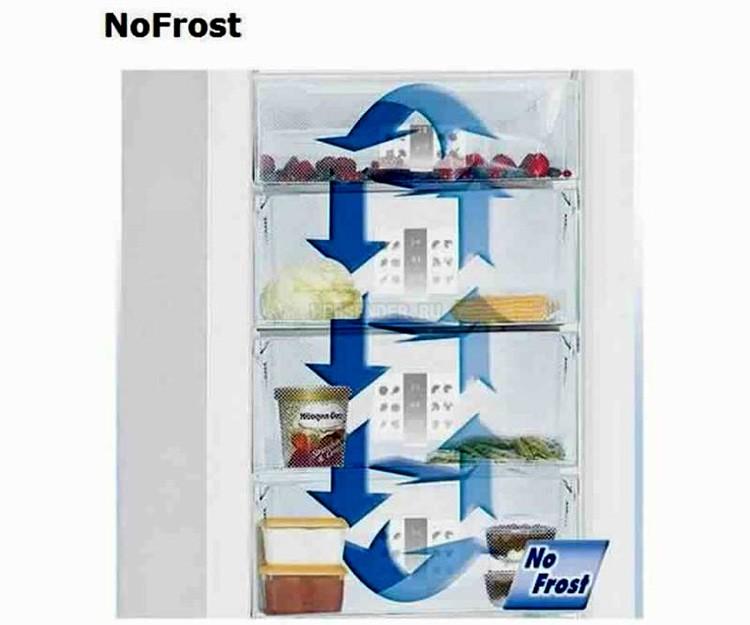 Топ-10 лучших холодильников ноу фрост