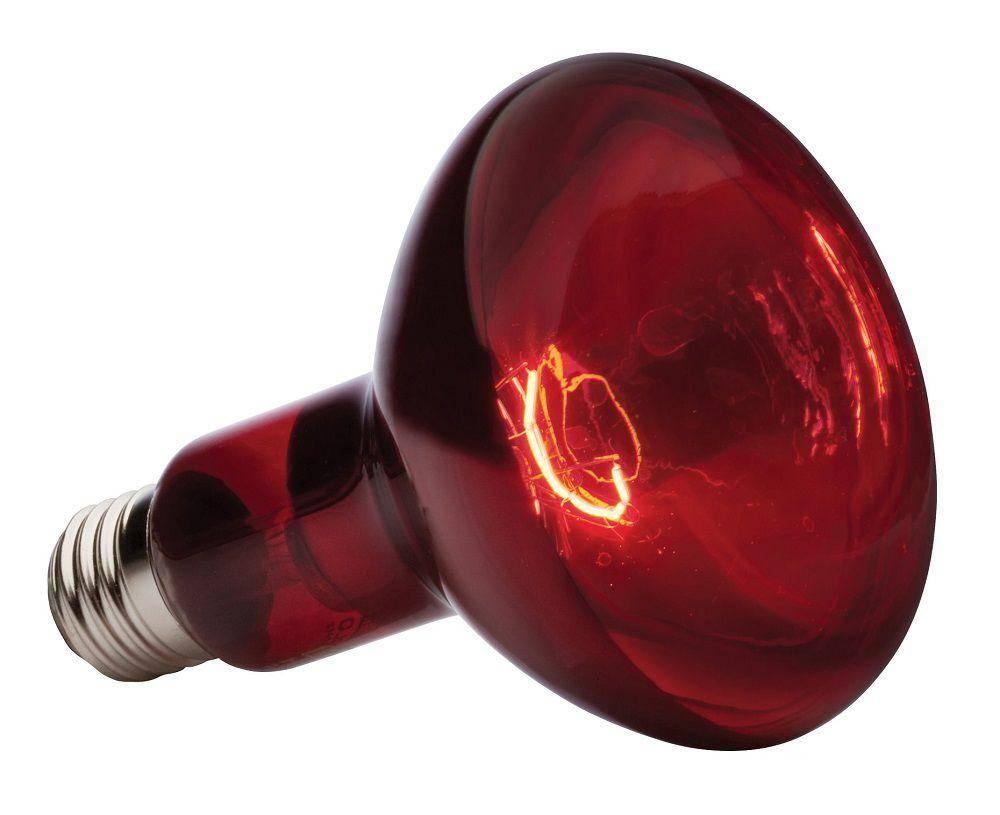 Инфракрасная лампа для обогрева помещения, животных: правила выбора, принцип работы