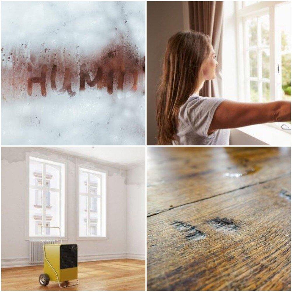 Как добиться нормы влажности воздуха в квартире