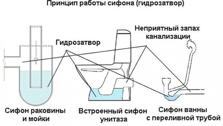 Гидрозатворы для канализации. основные разновидности
