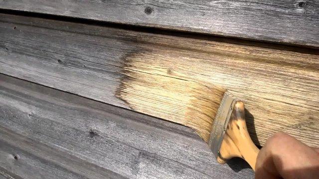 Как убрать плесень в домашних условиях (избавиться, вывести)?