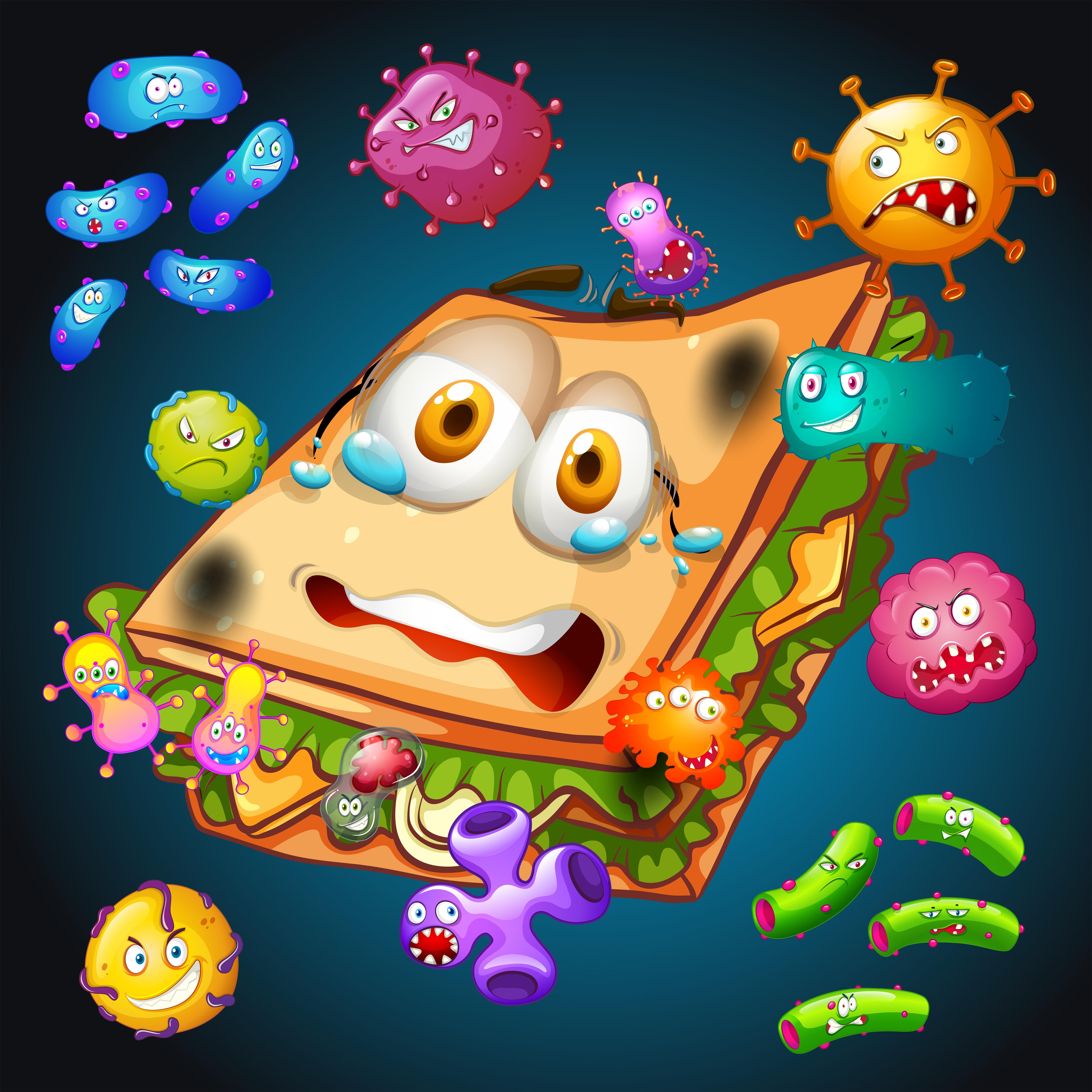 Определены места наибольшего скопления микробов