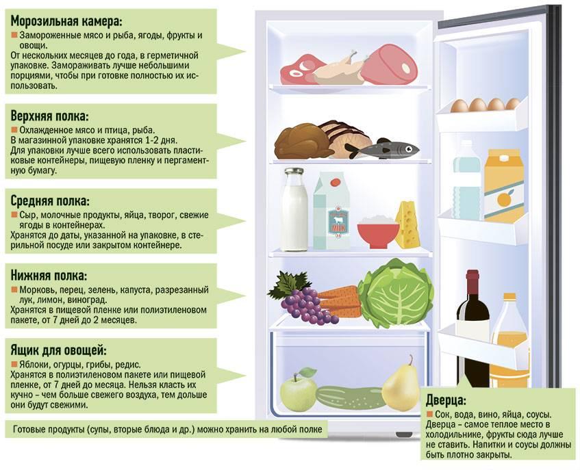Какая температура должна быть в холодильнике – быстрый ответ + инфографика