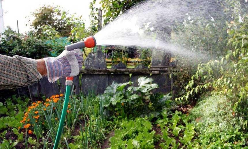 Какие трубы для полива огорода на даче использовать?