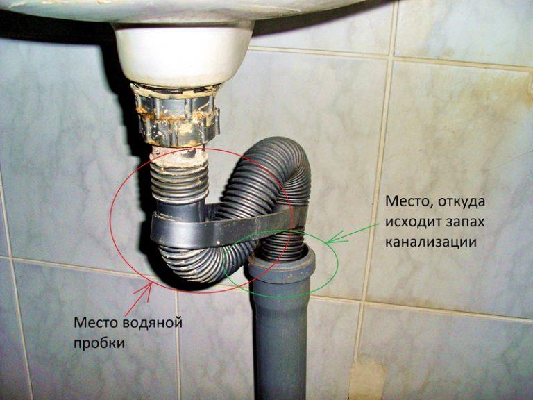 Из душевой кабины пахнет канализацией, что делать и почему воняет в душе?