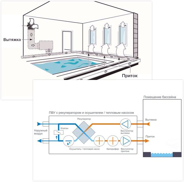 Вентиляция бассейна: проект для частного дома или коттеджа, схемы и расчеты